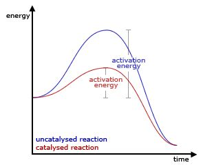 How to write a reaction paper in psychology